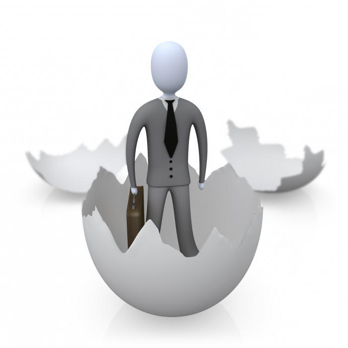 Индивидуальное предпринимательство Электронное правительство  Индивидуальное предпринимательство Электронное правительство Республики Казахстан